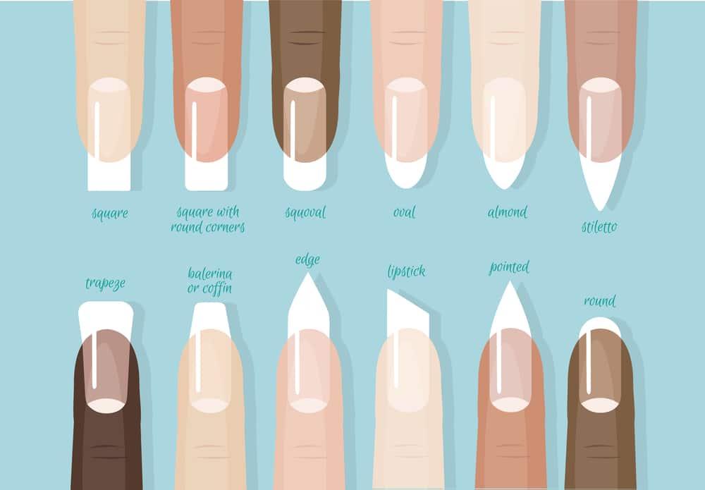 انواع دیزاین ناخن ذوزنقه-بالرینا-لبخند-لب-اشاره-دور-مربع-مربع-استوایی-بیضی-بادام-استایل